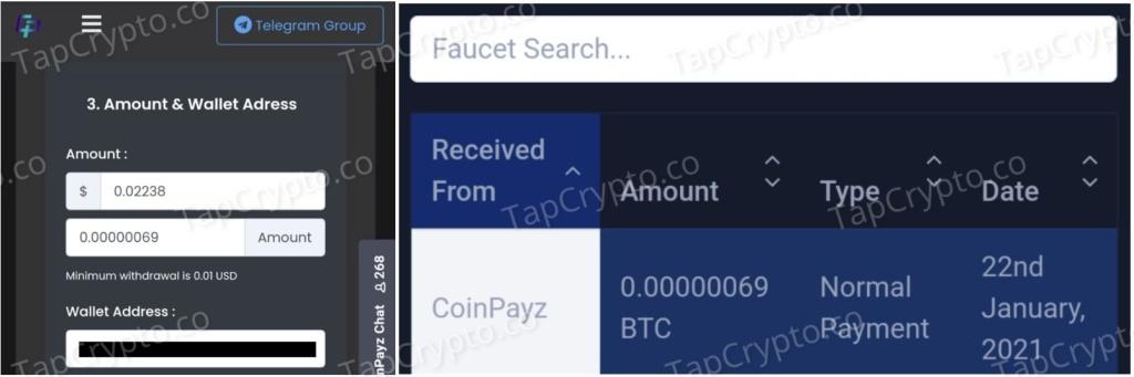 CoinPayz Bitcoin Payment Proof 1-22-2021